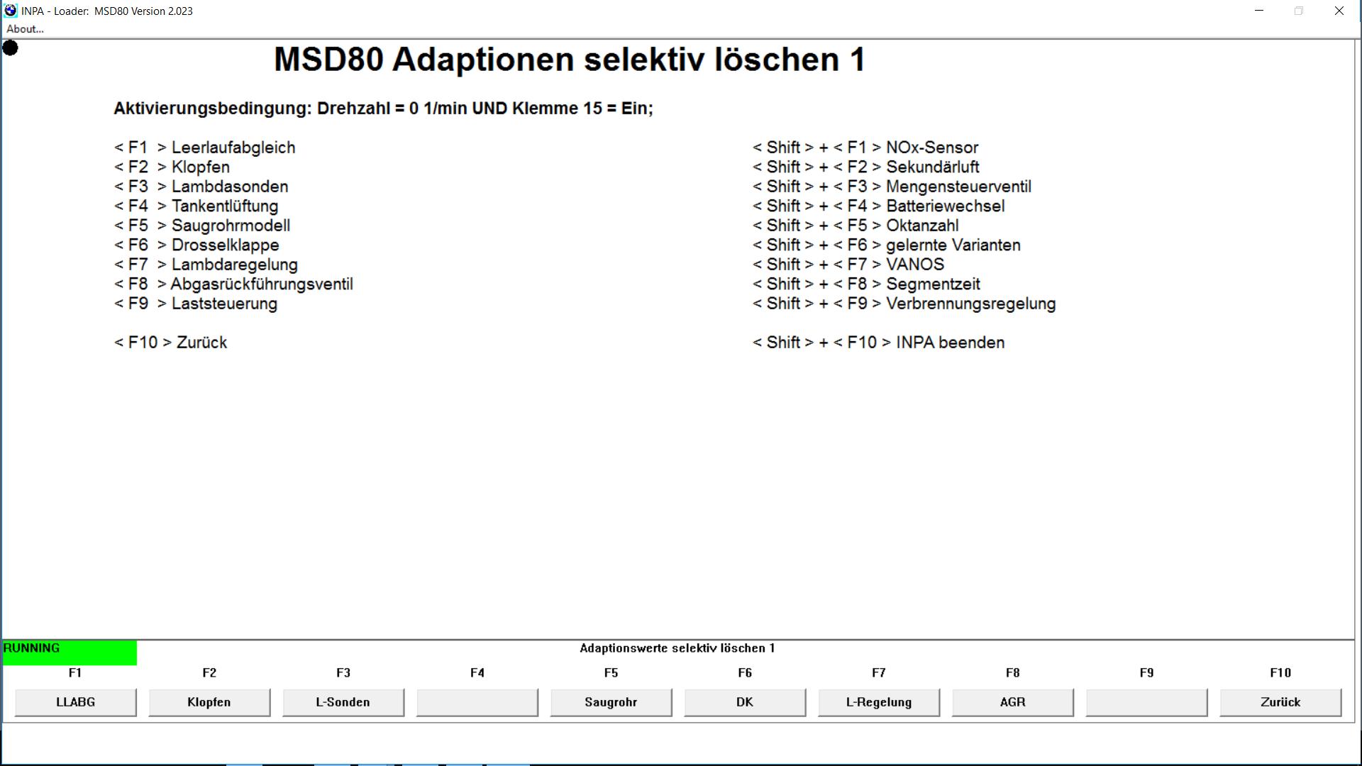BMW N43 N53 N52 INPA loader 2 023 diagnostics MSV70 MSV80 MSD80